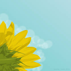 Summer sunflower by brokenbro