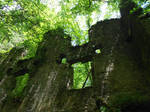 Ruins in the forest 03