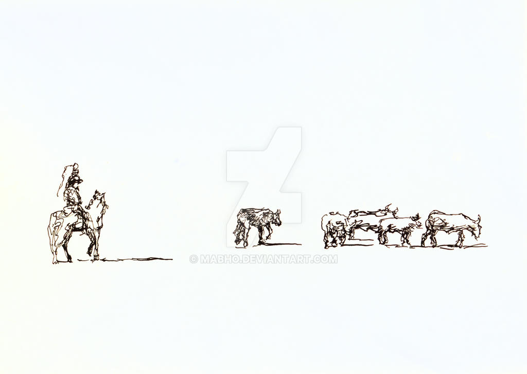 Cattle by mabho