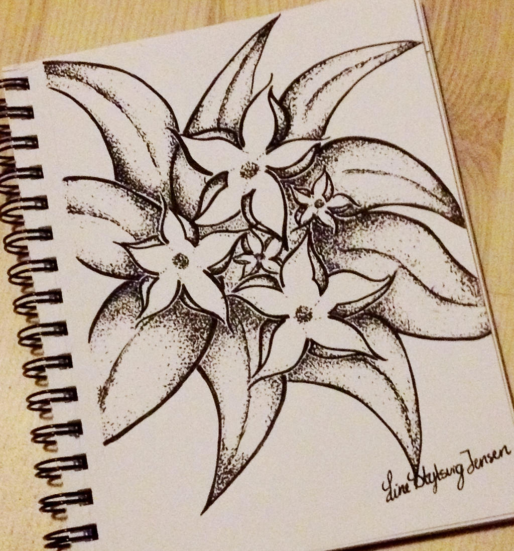 dotted flowers drawing by stylsvig on deviantart