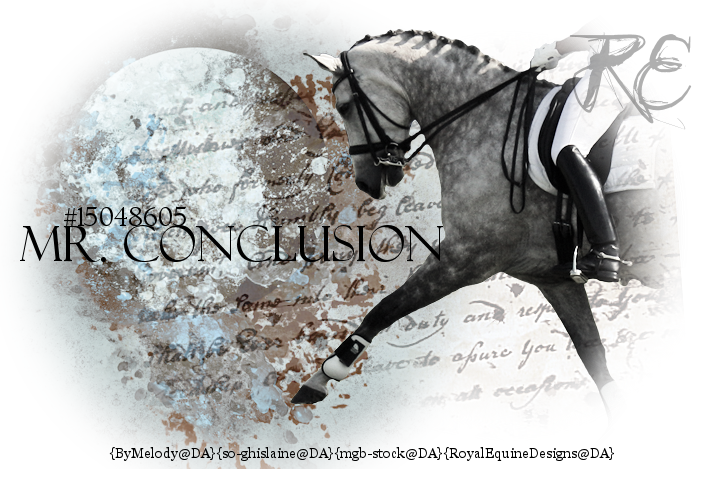 Mr. Conclusion