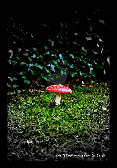 Enlightened Mushroom by CielleLaRuna