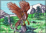 Clouded Gryphon
