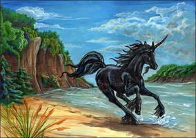 Race Along the Summer Seas by ChakotayDgryphon