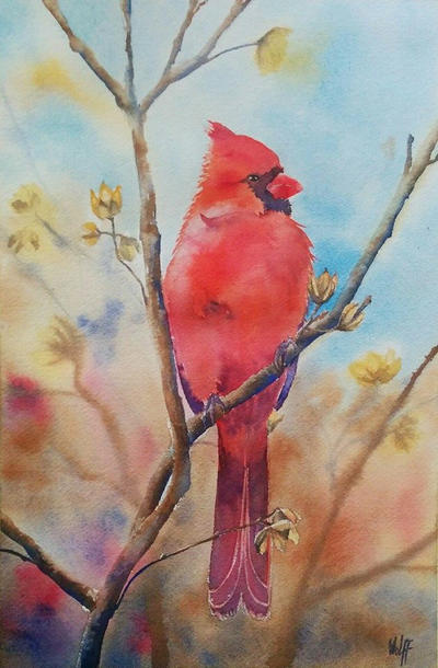 Cardinal by MagdalenaWolff