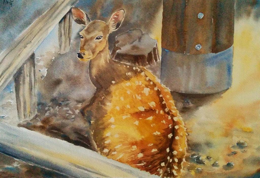 Nara doe by MagdalenaWolff