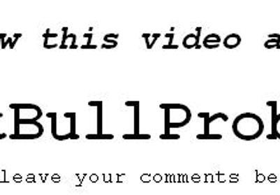 The 'Pit Bull Problem' by HyenaKlown