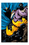 The Maxx colors