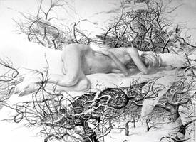 Apple Dream by shvayba