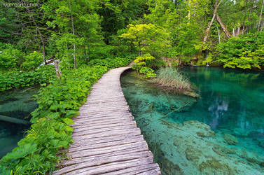 National park Plitvice lakes IV by ivancoric