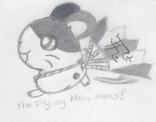 The Flying Hamtaro by LapisChan
