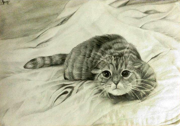 Little Kitten by chalollita