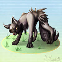 Wild POOCHYENA appeared!