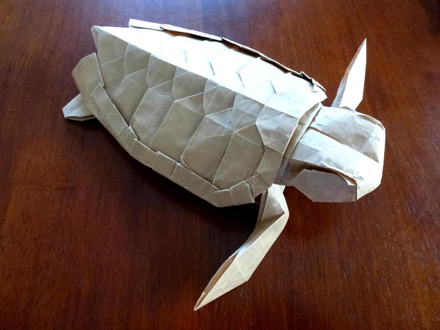 Loggerhead Turtle by neubauten