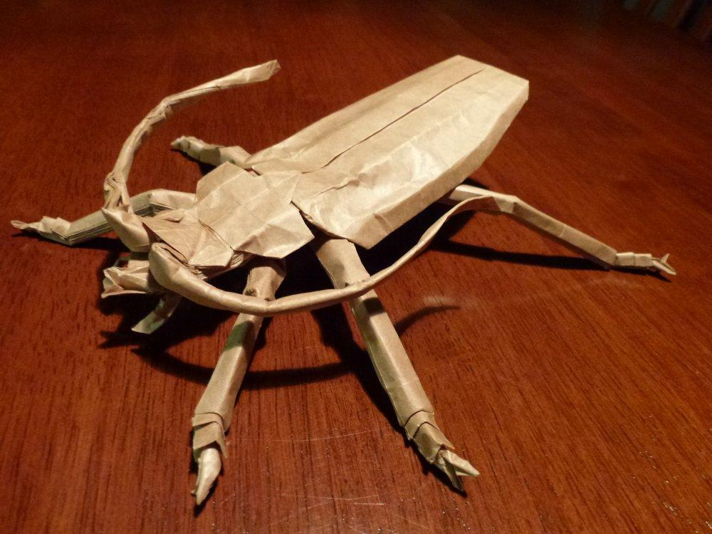 499 Titan Beetle by neubauten