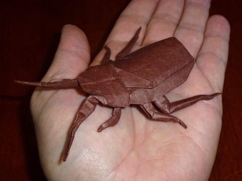 120 Robert Lang's Cockroach by neubauten