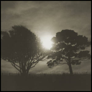 Moon-rise on foggy evening