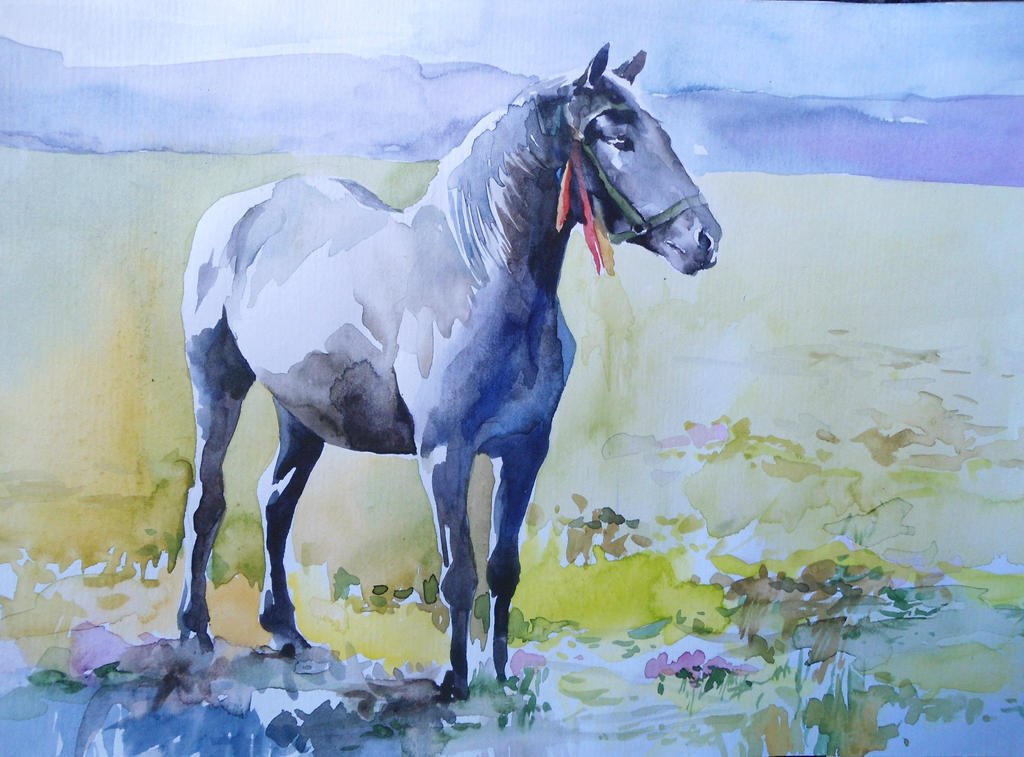 Horse study in watercolor by CristinaGrinciuc