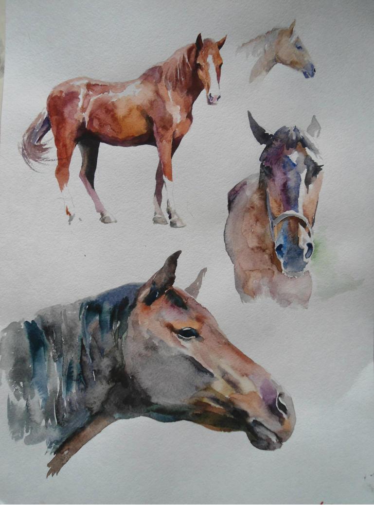 Horses fast studies, watercolor. by CristinaGrinciuc