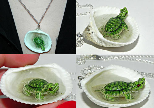 Tiny Turtle Jaccuzi Seashell Necklace
