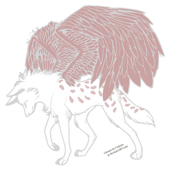 winged wolf adopt :open: