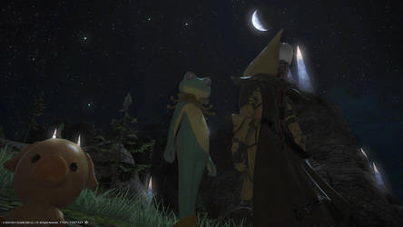 Frog under the Moonlight - ffxiv by blackorb00
