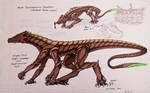 DominoSaurus Venatora - Male