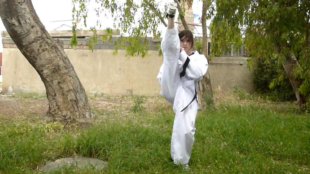 Taekwon ! by NickyKirei