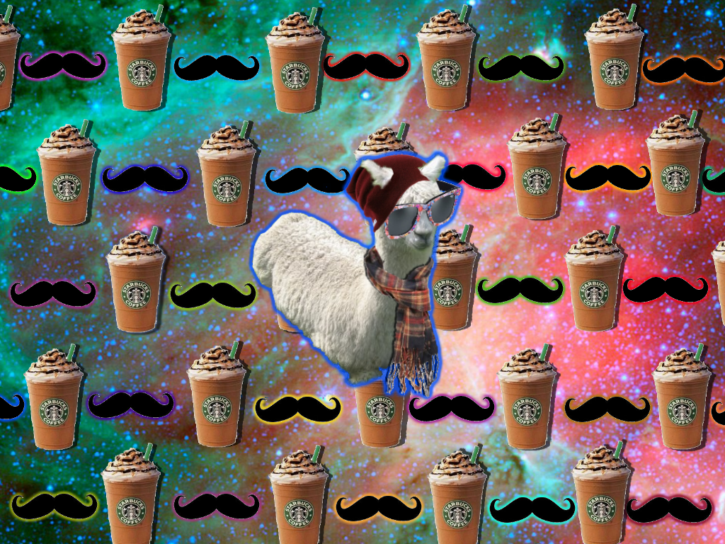 Hipster Llama By Burritosareawesome