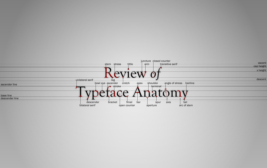 Review of Typeface Anatomy by zephyris on DeviantArt