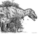 A Tyrannosaur emerges