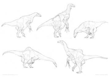 Anatomical sketches: Therizinosauria