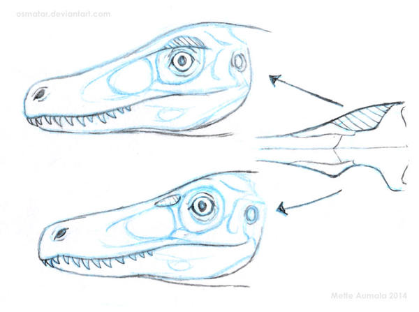 How (I think) deinonychosaur eye sockets work by Osmatar