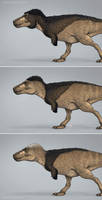 Three Styles for A Feathered Tyrannosaurus