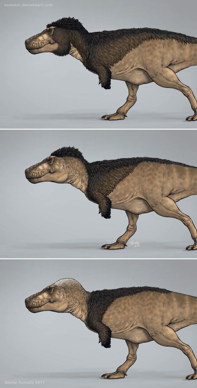 Three Styles for A Feathered Tyrannosaurus by Osmatar