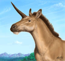 Junicornis by Osmatar