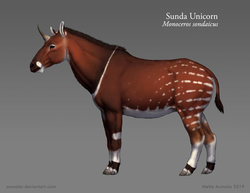 Starstruck: Sunda Unicorn by Osmatar