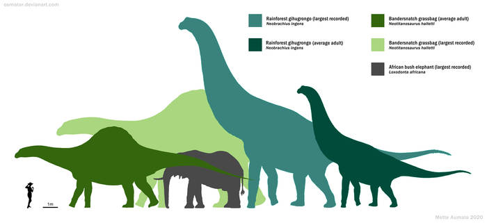 Largest Spec Sauropods