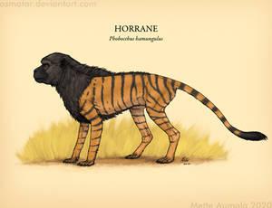 Spectember: Horrane