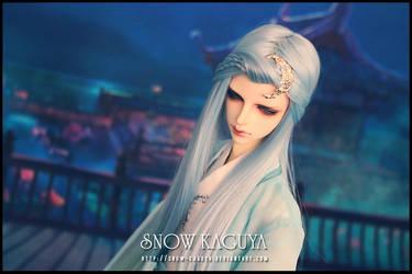 Timeless 5 by snow-kaguya