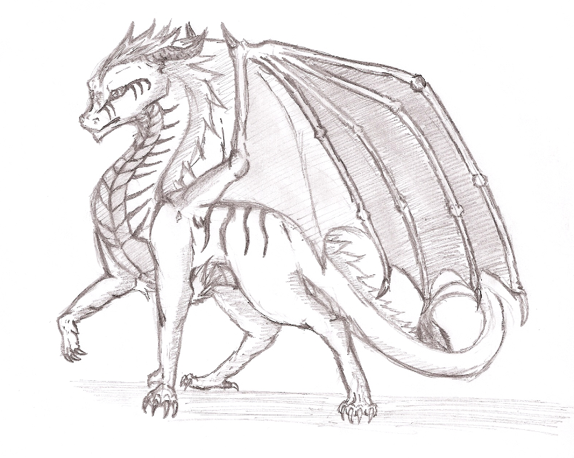 Fire Dragon by Wolfmaster2500 on DeviantArt