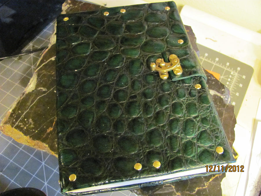 Dragon Hide Book by StudioGruhnj