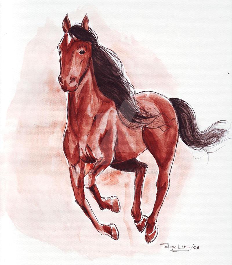 Horse by Felolira