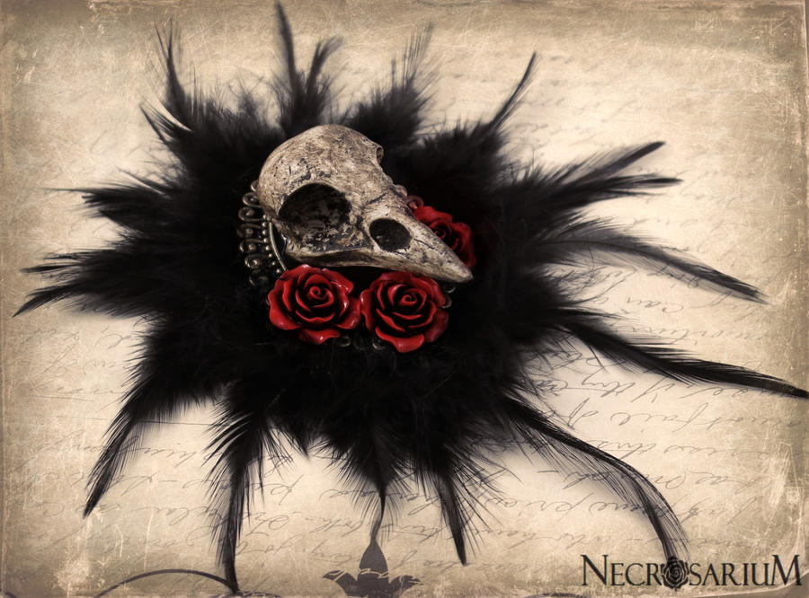 Feathered Crow Skull Brooch by Necrosarium