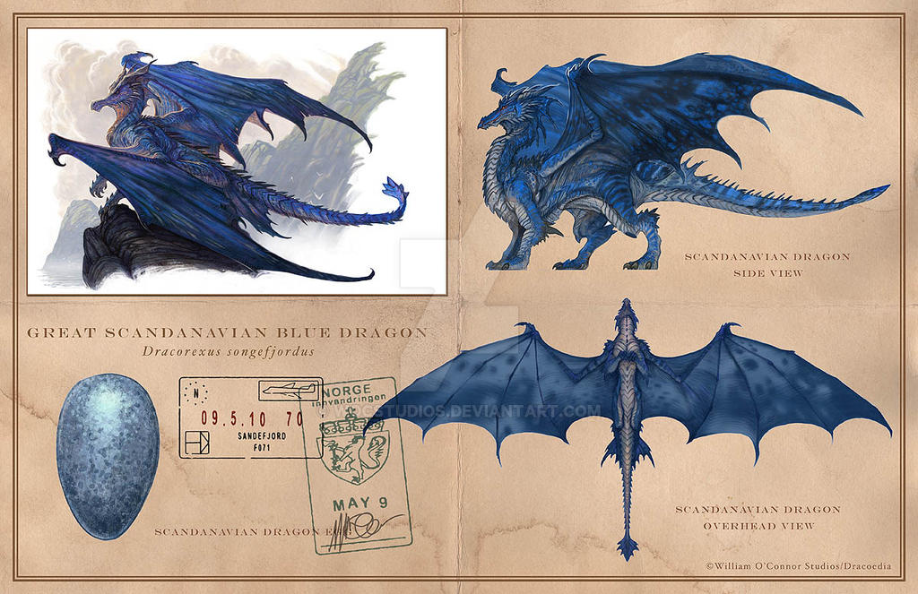 Scandavian Blue Dragon by wocstudios