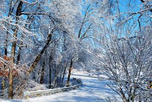 Winter Wonderland by Blacksand459