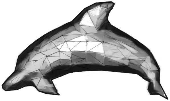 3D Polygon Study - Dolphin by Muhalovka