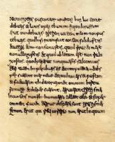 Lectionarius gallicanus by Errance