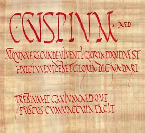 Caium Cuspium