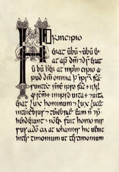 Book of Armagh insular's calligraphy